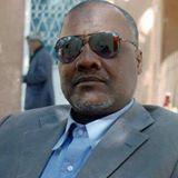 cheikh aidara