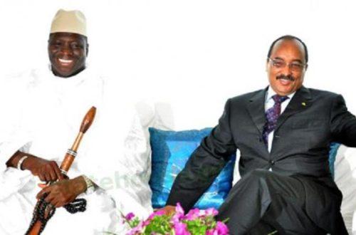 Article : Le duo Aziz-Jammeh : au-delà d'une amitié sacrificielle