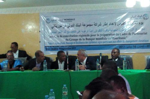 Article : A Aleg, consultation de haut niveau sur le secteur agropastoral en Mauritanie