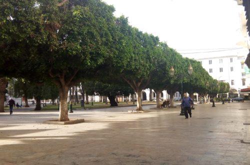 Article : Rabat, entre le must et le rustique