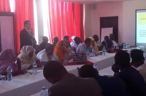 Article : SUN-Mauritanie : la société civile mauritanienne élabore son plan d'action