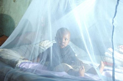 Article : Urgent OMVS : Après SSF le ministère de la santé tombera-il dans le piège de l'opacité dans la distribution des moustiquaires ?