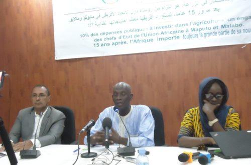 Article : ROSA et SUN-Mauritanie interpellent les Chefs d'Etat africains sur leurs engagements face à l'insécurité alimentaire