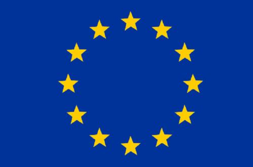 Article : Délégation de l'Union européenne : Déclaration locale sur les élections en Mauritanie.
