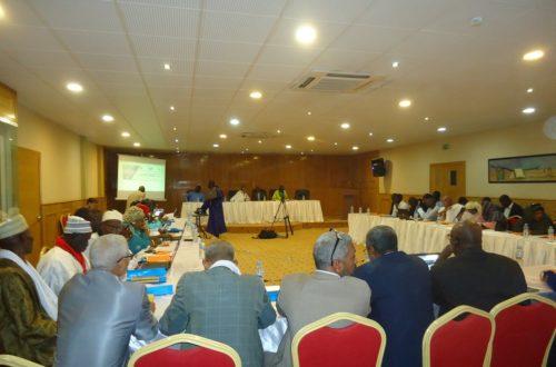 Article : Pêcheurs mauritaniens et sénégalais autour de la gestion de la ressource et le bon voisinage