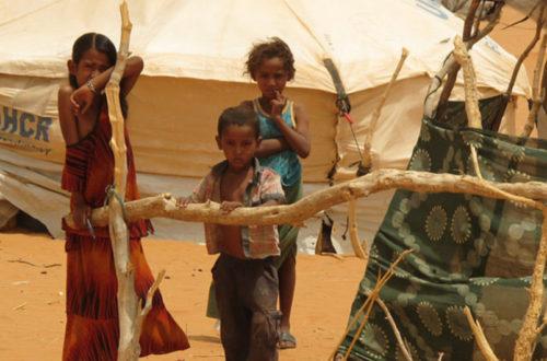 Article : 7 ans après la création du «Camp Mberra», l'aide humanitaire d'urgence dans sa forme classique reste-t-elle d'actualité ?