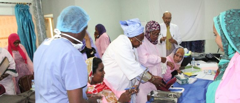 Article : Dix pays d'Afrique de l'Ouest à Nouakchott pour valider les documents du Mentorat clinique des sages-femmes