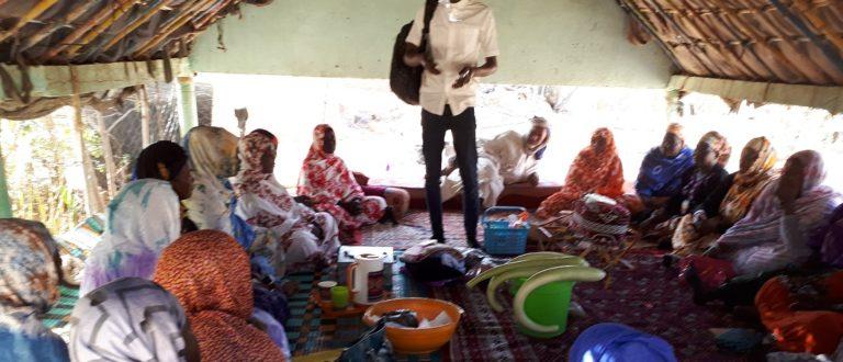 Article : Tekavoul, un programme qui change la vie de plus d'un millier de femmes à Sélibaby