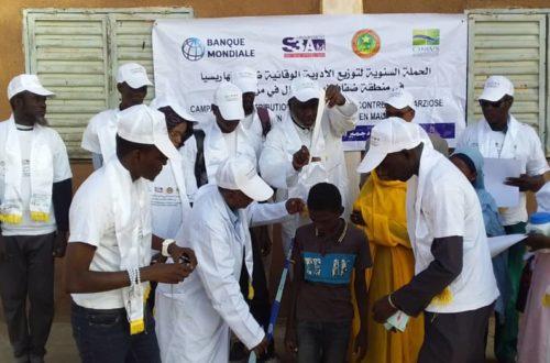 Article : Lutte contre la bilharziose, une campagne est lancée dans quatre régions de la Mauritanie