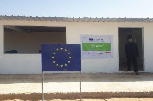 Article : Projet SAFIRE ou l'insertion professionnelle des jeunes par le jardinage, avec l'appui du Fonds fiduciaire d'urgence de l'Union européenne
