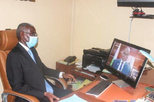Article : Sommet mondial de l'OIT, l'impact économique et social de la pandémie Covid-19, cas spécifique de l'Afrique