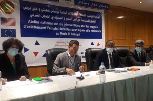 Article : Bassiknou et les réfugiés de Mberra au cœur d'une réflexion sur les moyens d'existence, la paix et la résilience au Hodh Charghi