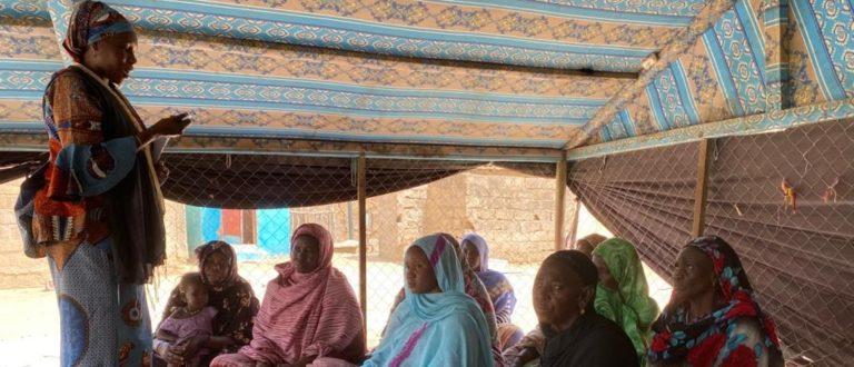Article : Femmes du Guidimagha : « à quand le retour de la clinique mobile de la Santé ? »