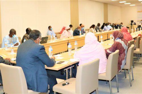 Article : Ressources domestiques pour la planification familiale en Mauritanie, une feuille de route et une coordination à mettre en place