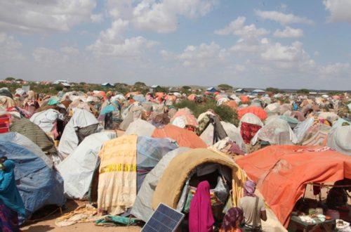Article : Bloqués au Maroc, des centaines d'Africains, dont des Mauritaniens, souffrent le calvaire